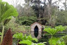 Kilmokea Gardens, Campile, Ireland
