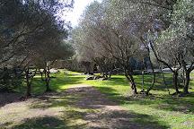 Nuraghe Albucciu, Arzachena, Italy