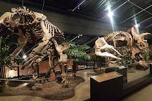 Houston Museum of Natural Science at Sugar Land, Sugar Land, United States
