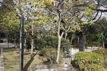Chidoriga-fuchi Park, Chiyoda, Japan