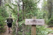 Grottos Trail, Aspen, United States