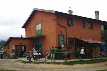 Azienda Agricola Brigne, Bardineto, Italy