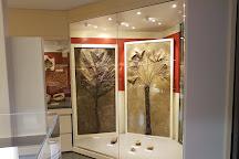 Museum dei Fossili Di Bolca Vestenanova, Bolca, Italy