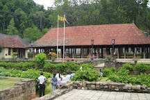 Udawattekele Sanctuary, Kandy, Sri Lanka