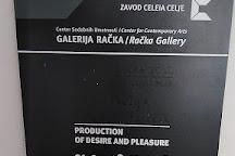 Račka Gallery, Celje, Slovenia