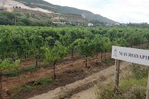 Gentilini Winery & Vineyards, Minia, Greece