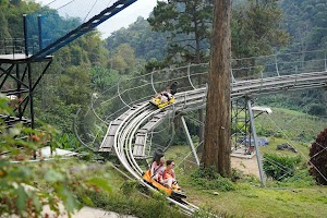 Pongyang Jungle Coaster & Zipline