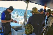 Evans Head Fishing Charters, Evans Head, Australia