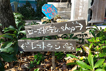 Hanaasobi, Aso, Japan