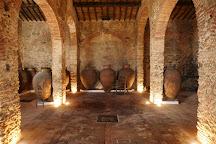 Cella Vinaria Antiqua, Vila de Frades, Portugal