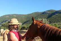 In the Land of the Wolf, Galatas, Greece