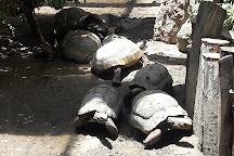 Zoológico Municipal Vesty Pakos Sofro, La Paz, Bolivia