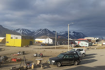 Svalbard Husky, Longyearbyen, Norway