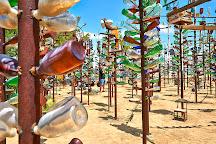Elmer's Bottle Tree Ranch, Oro Grande, United States