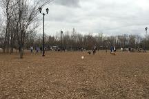 Dog Park at Bonnie Wenk, McKinney, United States
