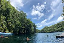 Jellyfish Lake, Koror, Palau