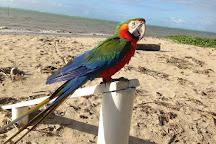 Zoologico Pet Silvestre, Maragogi, Brazil