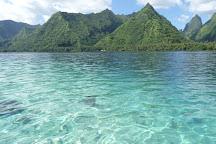 Teahupoo Excursion Taxi Boat, Teahupoo, French Polynesia