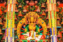 Matho Gompa, Leh, India