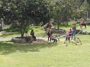 Recreo Campestre Muyurina PURAVIDA 6
