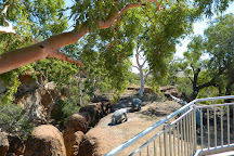 Australian Age of Dinosaurs, Winton, Australia