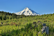 Mt. Hood National Forest, Clackamas County, United States