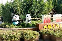 Shanghai Wild Animal Park, Shanghai, China