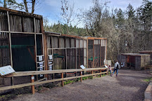 Cascades Raptor Center, Eugene, United States