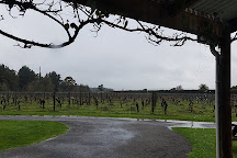 Gladstone Vineyard, Carterton, New Zealand
