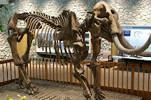 Mastodon State Historic Site, Imperial, United States