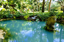 Washington Oaks Gardens State Park, Palm Coast, United States