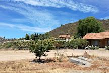 OWM, Santa Cruz, Chile