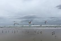Pismo State Beach, Oceano, United States