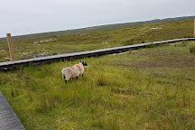 Alcock and Brown Landing Site, Clifden, Ireland