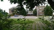 Городской парк на фото Камешкова