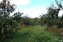 Moore Orchards, Cobourg, Canada