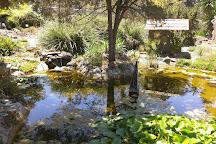 The Ruth Bancroft Garden, Walnut Creek, United States