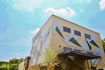 Triangle Rock Club - Morrisville, Morrisville, United States