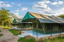 Absolute Holiday Safaris, Nairobi, Kenya
