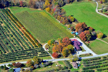 Saint Paul Mountain Vineyards, Hendersonville, United States