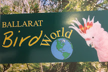 Ballarat Bird World, Ballarat, Australia