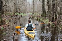 Charleston Kayak Company, Charleston, United States
