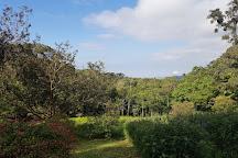 Curi Cancha Reserve, Monteverde, Costa Rica