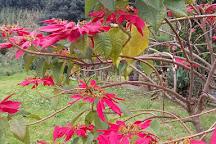 Pascual Abaj, Chichicastenango, Guatemala
