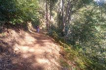 Miradouro da Boca dos Namorados, Camara De Lobos, Portugal