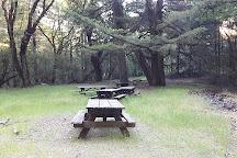 Robert Louis Stevenson State Park, Calistoga, United States