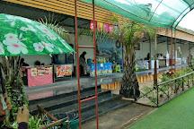 Dinosea World Park, Khok Kloi, Thailand