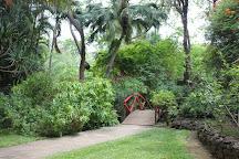 Visit Jardin D Eden On Your Trip To Saint Gilles Les Bains