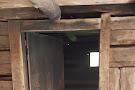 Walker Sisters' Cabin