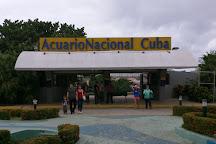 Acuario Nacional, Havana, Cuba